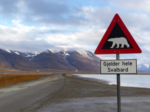 """Veiskilt: """"Fare for isbjørn. Gjelder hele Svalbard."""""""